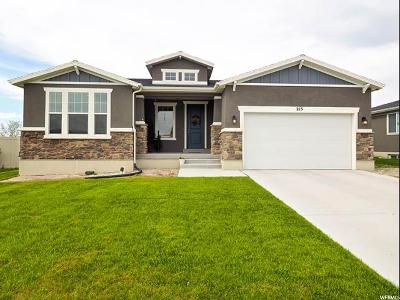 Stansbury Park Single Family Home For Sale: 215 E Rockwood Way