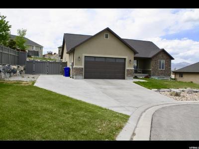 Eagle Mountain Single Family Home For Sale: 3632 S Jacobs Ct E