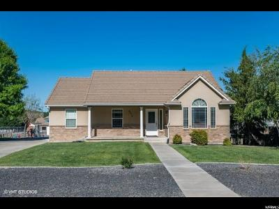 St. George Single Family Home For Sale: 8315 N Diamond Vly