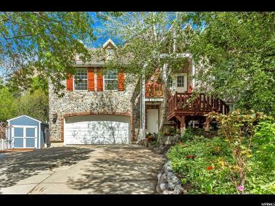 Provo Single Family Home For Sale: 1490 E Springdell Dr N