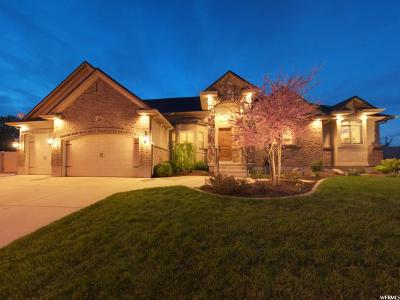 Riverton Single Family Home For Sale: 3308 W Hayden Ridge