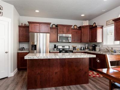 Eagle Mountain Single Family Home For Sale: 7880 N Sagebrush Ln