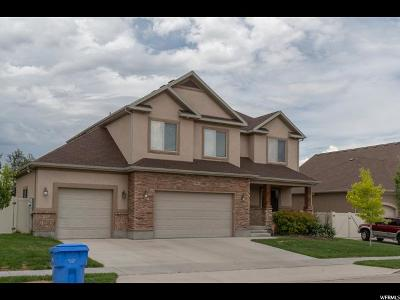 Riverton Single Family Home For Sale: 3354 W Chatel Dr S