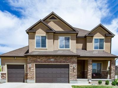 Riverton Single Family Home For Sale: 3322 W Zermatt Dr S