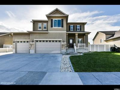 Stansbury Park Single Family Home For Sale: 6619 N Sky Heights Dr E