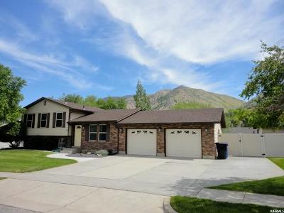 Brigham City Single Family Home For Sale: 959 E 300 S