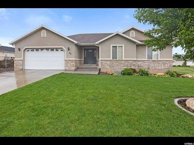 Santaquin Single Family Home For Sale: 693 N 100 E