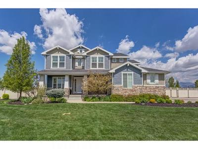 Kaysville Single Family Home For Sale: 542 W Saddle Back Cir S