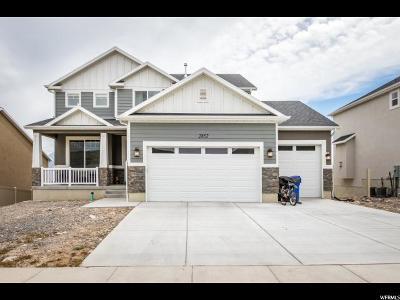 Saratoga Springs Single Family Home For Sale: 2852 S Kollman Ln