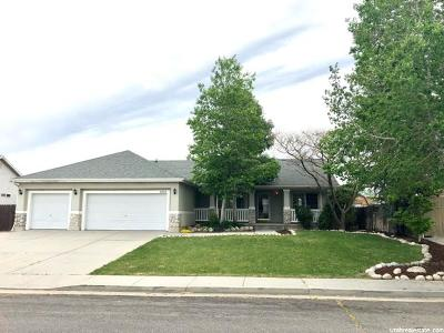 West Valley City Single Family Home For Sale: 3755 S Beth Park Dr