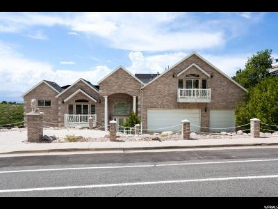 Sandy Single Family Home For Sale: 10190 S Wasatch Blvd E