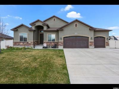 West Jordan Single Family Home For Sale: 8828 S Bornite Rd W