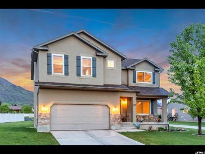 Pleasant Grove Single Family Home For Sale: 543 S 430 E