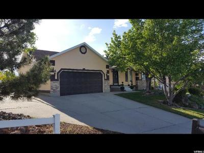 Riverton Single Family Home For Sale: 14194 S Murdoch Peak Dr