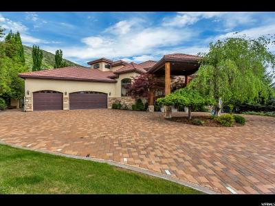 Lindon Single Family Home For Sale: 183 S Dry Canyon Dr