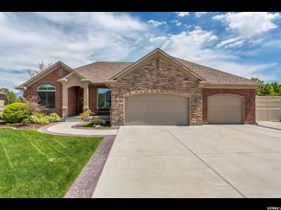 South Jordan Single Family Home For Sale: 9417 S Riley Ann Cir W