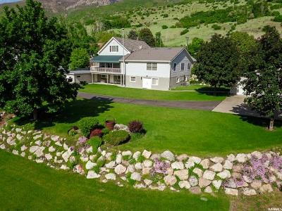 Farmington Single Family Home For Sale: 1372 S 200 E