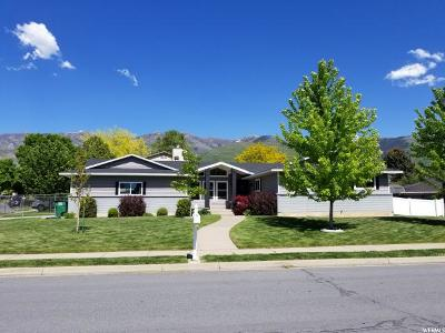 Kaysville Single Family Home For Sale: 590 N 320 E