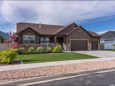 Spanish Fork Single Family Home For Sale: 1326 E 1520 S