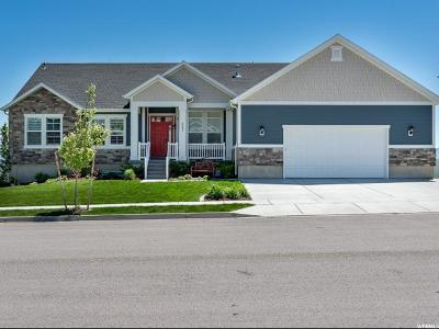 Lehi Single Family Home For Sale: 527 W Mountain View Rd