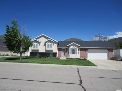 Mapleton Single Family Home For Sale: 1464 N 200 W