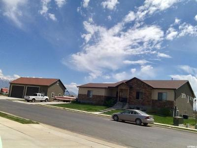 Lehi Single Family Home For Sale: 76 E 1030 S
