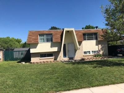 Taylorsville Single Family Home For Sale: 1316 W Tamarack Rd S