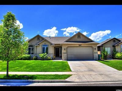 Riverton Single Family Home For Sale: 12842 S Tortoise