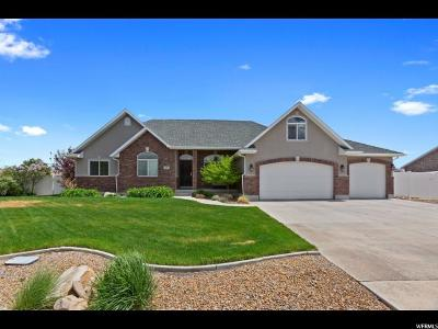 Price UT Single Family Home For Sale: $325,000