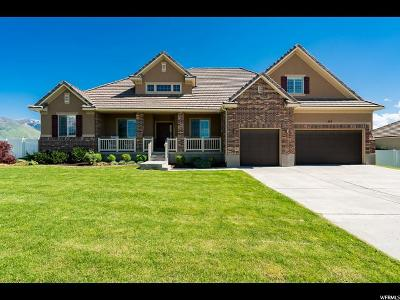 Kaysville Single Family Home For Sale: 265 W Kays Dr