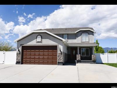 Grantsville Single Family Home For Sale: 1018 S Mustang Dr E