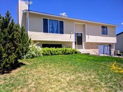 Price UT Single Family Home For Sale: $169,000