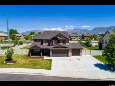 Lehi Single Family Home For Sale: 685 E Bullrush Pkwy