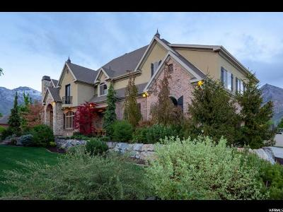Single Family Home For Sale: 366 River Rd S