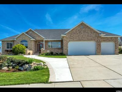 South Jordan Single Family Home For Sale: 1123 W Park Palisade Dr S