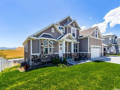 West Jordan Single Family Home For Sale: 7271 S Flaxton Ln W