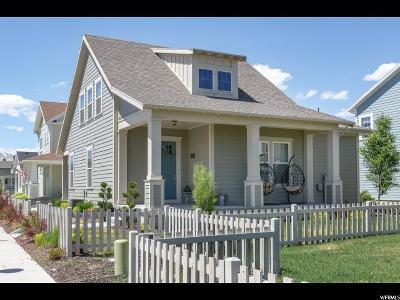 South Jordan Single Family Home For Sale: 5236 W Burntside Ave S