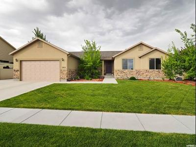 Eagle Mountain Single Family Home For Sale: 1043 E Searle Ln