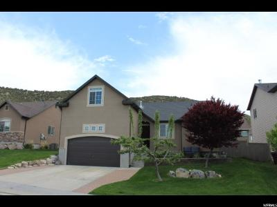 Eagle Mountain Single Family Home For Sale: 6945 N Kiowa Pkwy E