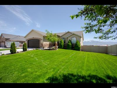 South Jordan Single Family Home For Sale: 11619 S Gold Stone Dr