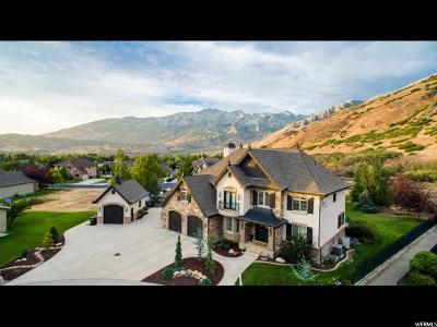 Alpine Single Family Home For Sale: 1279 E Cedar Mountain Cir