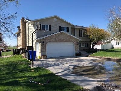 Tremonton Single Family Home For Sale: 2228 E Main