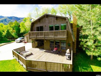 Springville Single Family Home For Sale: 1972 S Holiday Hls