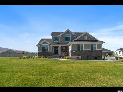 Kaysville Single Family Home For Sale: 910 Mary Margaret Dr