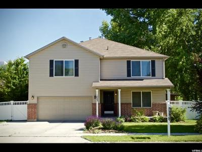 Spanish Fork Single Family Home For Sale