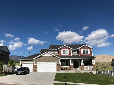 Herriman Single Family Home For Sale: 13068 S Muzzle Loader Dr