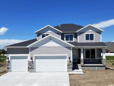 Lehi Single Family Home For Sale: 2240 W Dapple Dr.