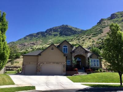 Provo Single Family Home For Sale: 1467 E 330 N