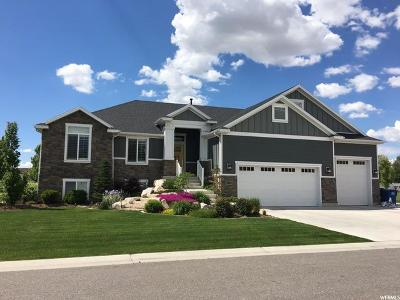 Kaysville Single Family Home For Sale: 1380 Angel Crest Way