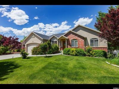 Herriman Single Family Home For Sale: 5358 W White Dawn Cir S